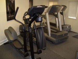 ICON Performance Cardio Section