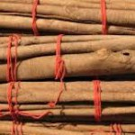 The Antibiotic Properties of Cinnamon